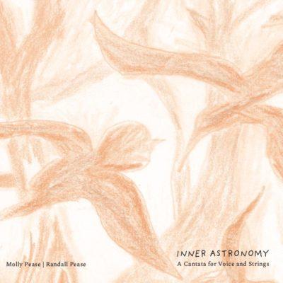 Inner Astronomy